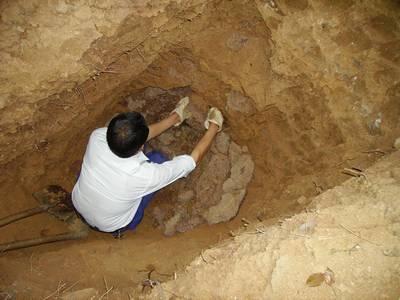 深挖白蚁巢